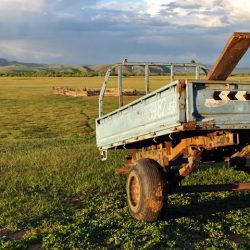 Featured Image Things to Know About Rangeland Management 250x250 - Things to Know About Rangeland Management