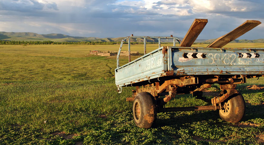 Featured Image Things to Know About Rangeland Management - Things to Know About Rangeland Management