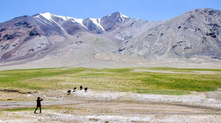 Featured Image Effect of Climate Change on Rangelands 770x430 - Effect of Climate Change on Rangelands