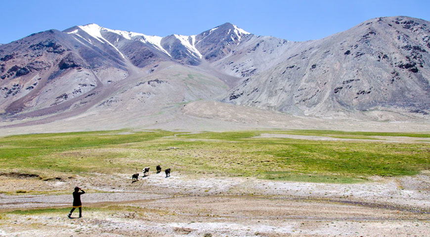 Featured Image Effect of Climate Change on Rangelands - Effect of Climate Change on Rangelands